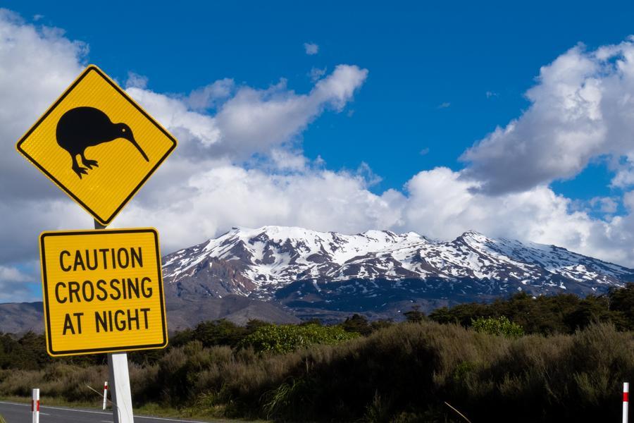 【澳遊客】新一品紐西蘭純南島冰河、高山火車、峽灣8天