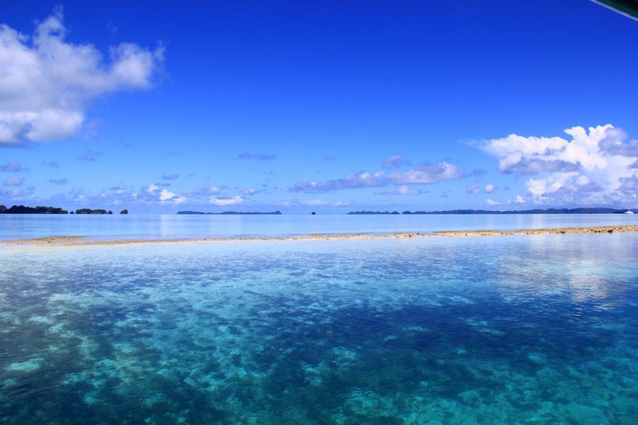【頂級帛琉】二次出海、夜釣、牛奶湖、大斷層、水母湖、德國水道4日