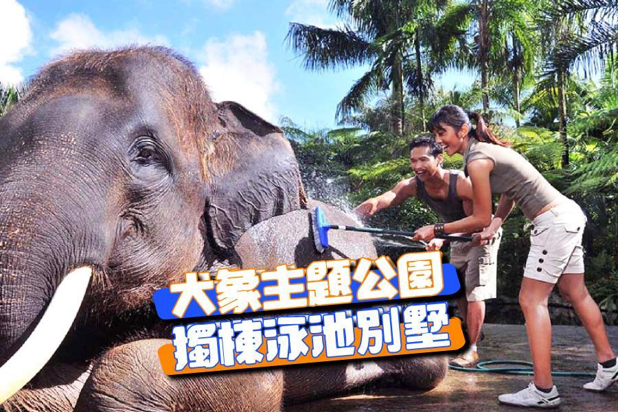 【親子 i峇里 】烏布阿賴耶渡假酒店 + 大象主題公園 + 兩晚獨棟泳池別墅峇里島自由行5日(長榮/華航)