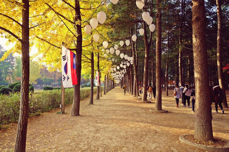 【迷你小團✈跟著韓劇玩首爾】浪漫童話景點拍照趣~首爾半自由行4日(可續住延回-泰國航空)