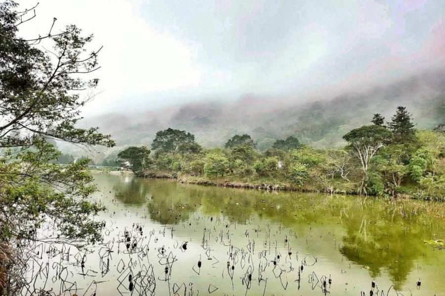 【苗栗】南庄‧護魚步道‧向天湖‧玫瑰森林一日遊