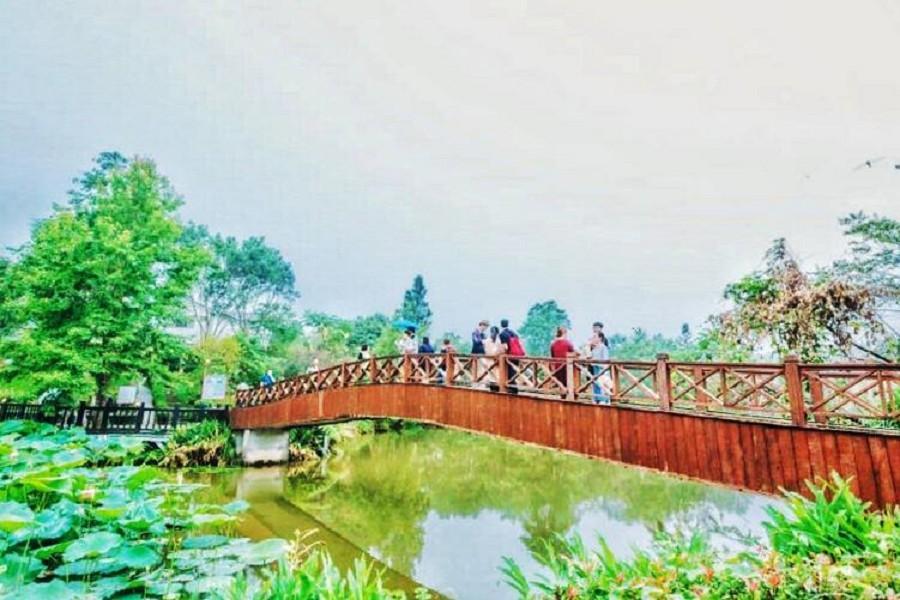 【苗栗】南庄‧護魚步道‧向天湖‧玫瑰森林一日遊(走春專案 買一送一)