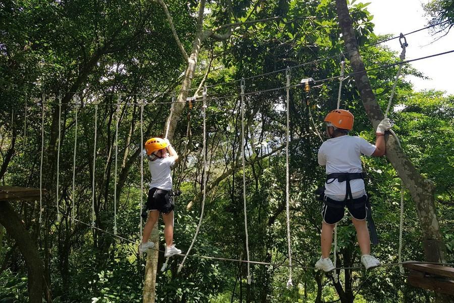 野猴子探險森林·昆蟲老師野外探索.超蝦DIY親子同樂二日遊
