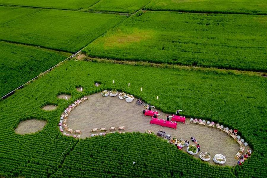 【花東】織羅社區、東河部落、壽豐休閒農業、探索部落在地體驗三日遊