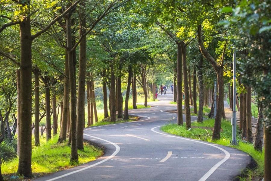 【台中】樂在騎中~潭雅神綠園道自行車慢遊二日(沿途停靠桃園及新竹)