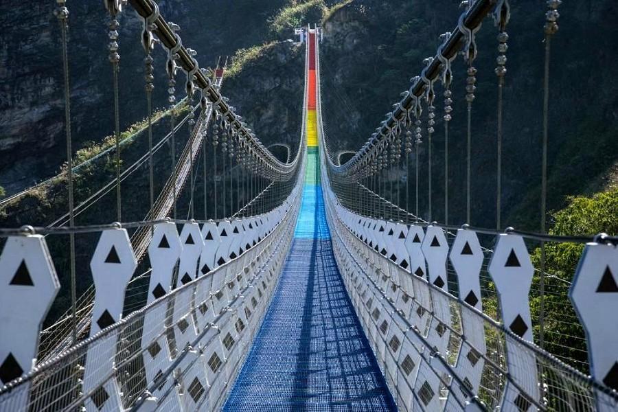 【南投】雙龍七彩吊橋.採果趣.溪頭妖怪村二日遊(親子同樂)