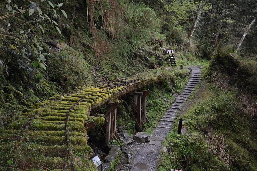 【宜蘭】蔥農體驗、威士忌、太平山、見晴懷古、鳩之澤夢幻藍、步道漫遊爽住溫泉3日
