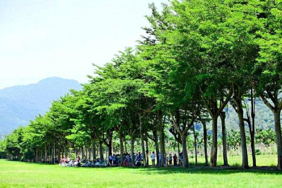 【台中出發】東遊龍田綠色隧道、綠島乘風三日遊