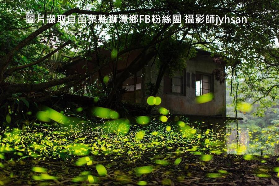 【苗栗】仙山賞螢、鐘樓古道秘境、濟生手作體驗一日遊