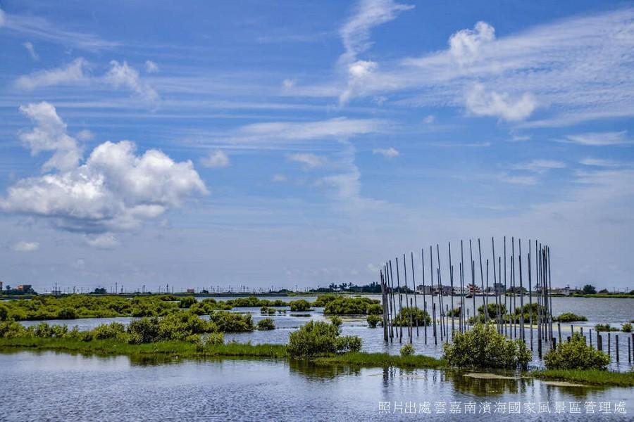 【雲西好好玩】口湖馬蹄蛤、成龍溼地、生態文化一日遊