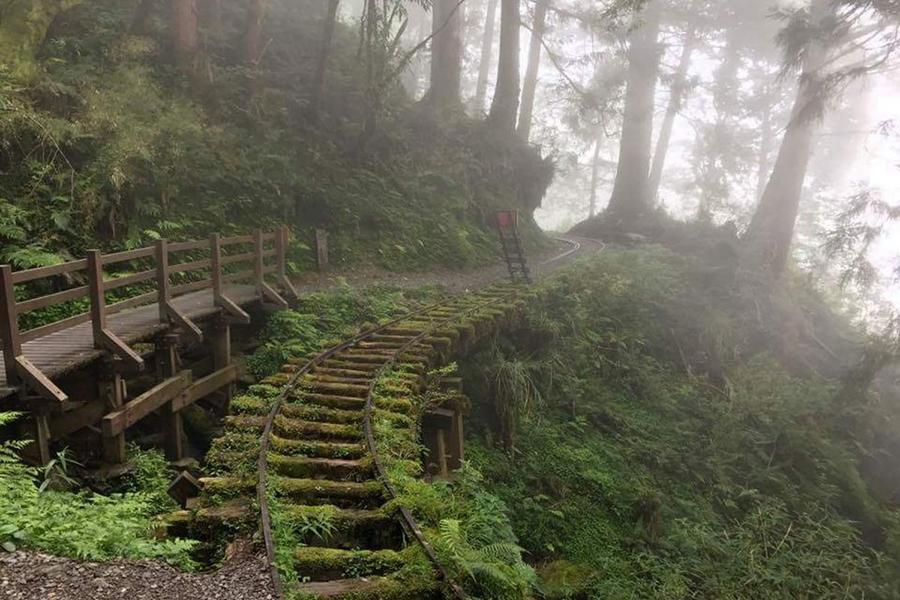 【雲霧繚繞】太平山、見晴懷古步道、魔戒神祕洞窟、五色飯糰DIY2日遊