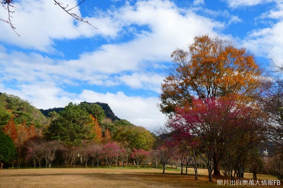 【走入山林】奧萬大、.歐風清境、天空步道二日遊
