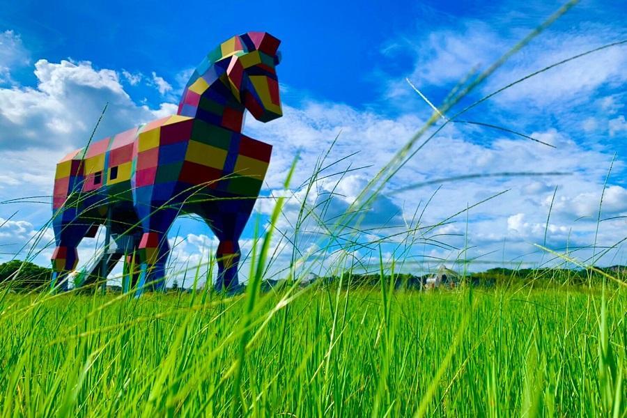 【台南逗陣玩】走馬瀨農場、巨大梅花鹿、台江綠建築、漁光島二日