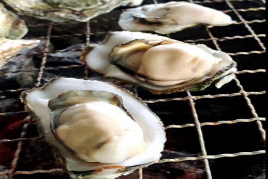 【台南逗陣玩】走馬瀨農場、船遊沙洲、烤鮮蚵吃到飽、入住老爺行旅2日
