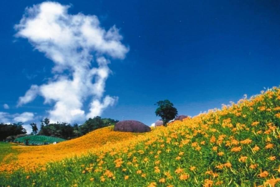 【花東慢旅】太魯閣九曲洞、夢幻縱谷金針花賞、瑞穗天合歐風城堡黃金湯三日