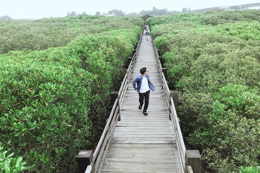 新豐紅毛港紅樹林、峨眉湖步道、新竹城隍廟一日遊