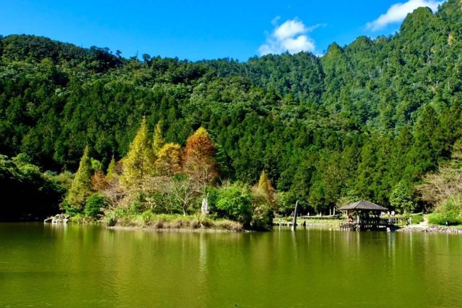 【東南賓士車】中興文創園區、清水地熱公園、明池森林童話一日遊