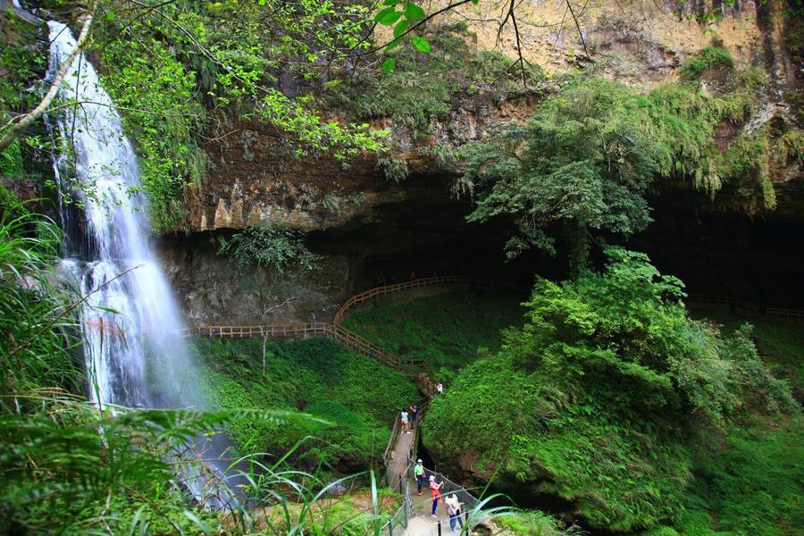 【森入杉林雙瀑布】杉林溪松瀧岩、青龍瀑布、忘憂森林仙境、紫南宮二日遊