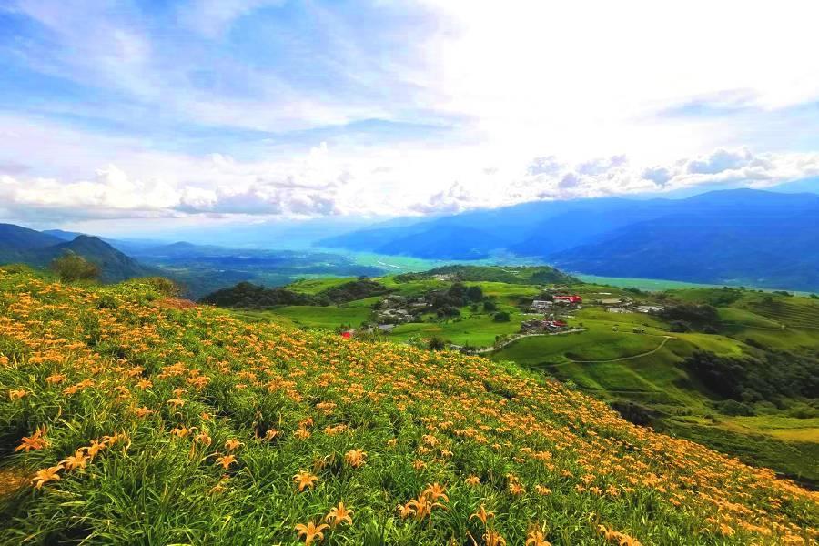 【花蓮】六十石山金針花海、瓦拉米古道、抓烤小龍蝦體驗、海崖谷,花蓮三日