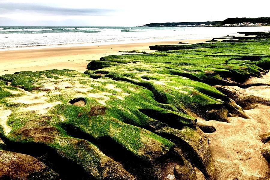 【北北基】老梅綠石槽、和平島、獅頭山,秘境探索一日遊(買一送一)