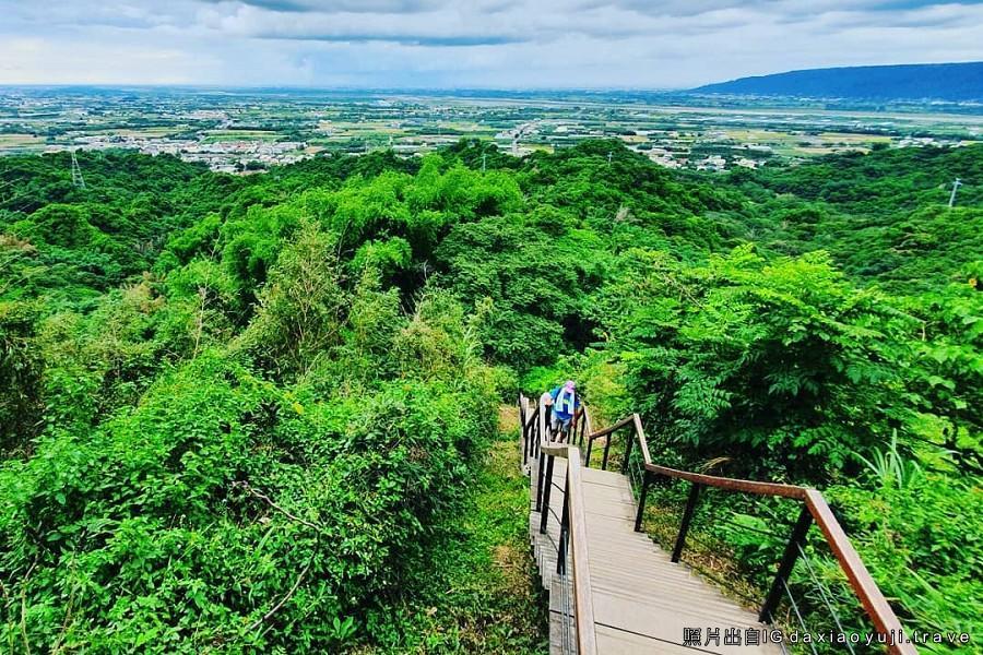 【香芋林內】林內教芋部、龍過脈森林步道、草嶺風景區 雲東森呼吸二日