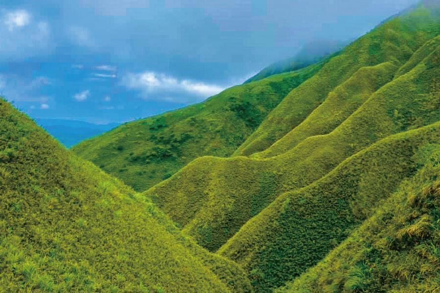 【走進山林】抹茶山、抹茶湖、仙境河道、冬山河生態綠舟、宜蘭二日遊