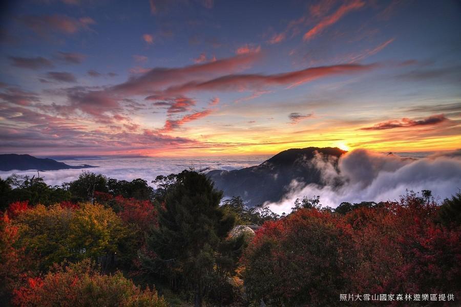 【悠遊山林】大雪山國家森林遊樂區 森呼吸一日