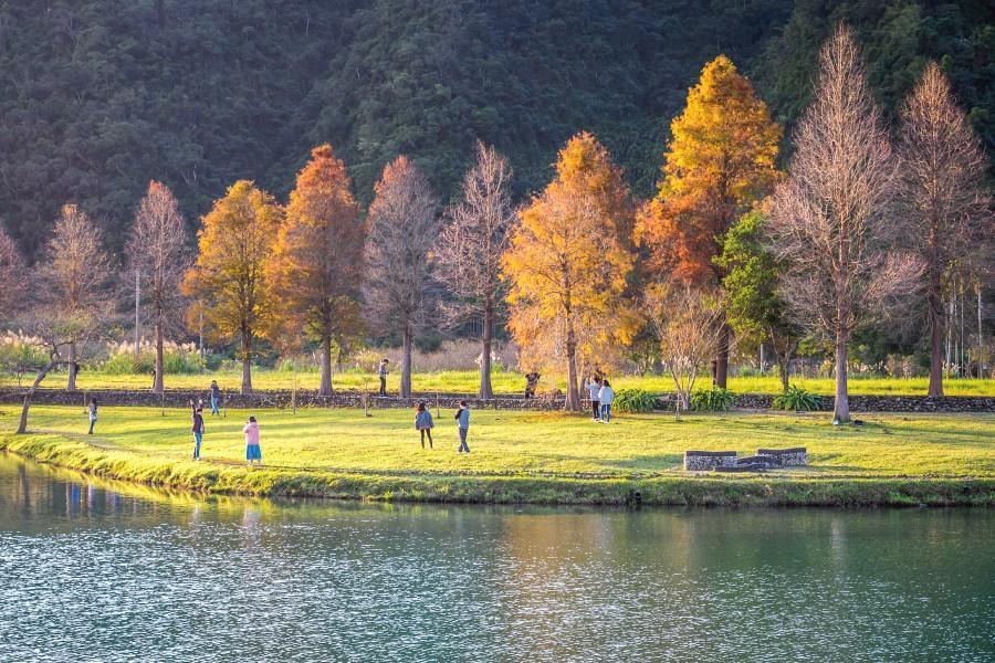【桃園出發】IG美拍安農溪、落羽松秘境、梅花湖風景區一日遊