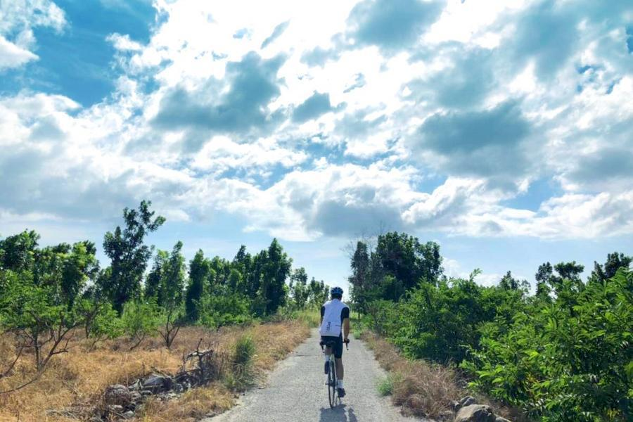 【商務車微旅行】 台東後山騎走-都蘭國.鸞山部落會走路的樹二日