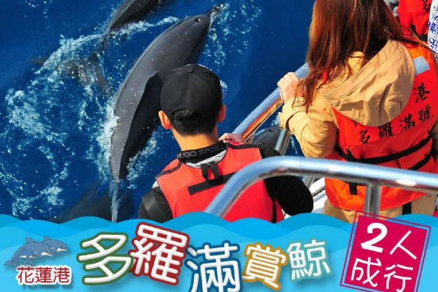 【花蓮】多羅滿-賞鯨