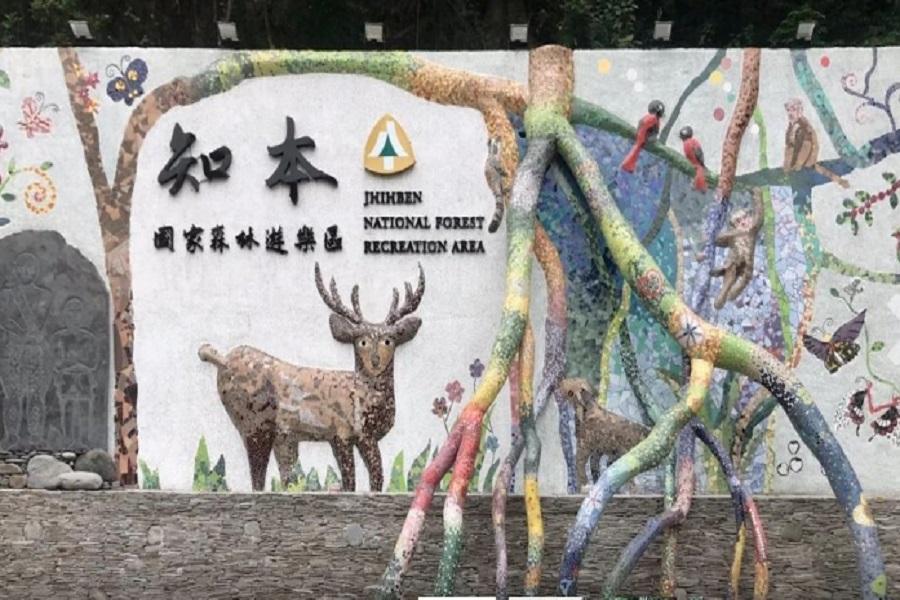 【台東】知本國家森林遊樂區門票(平假日均可使用)