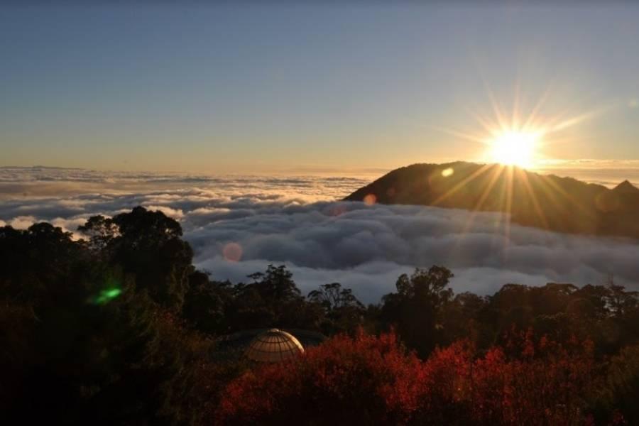 【台中】大雪山國家森林遊樂區門票(平假日均可使用)