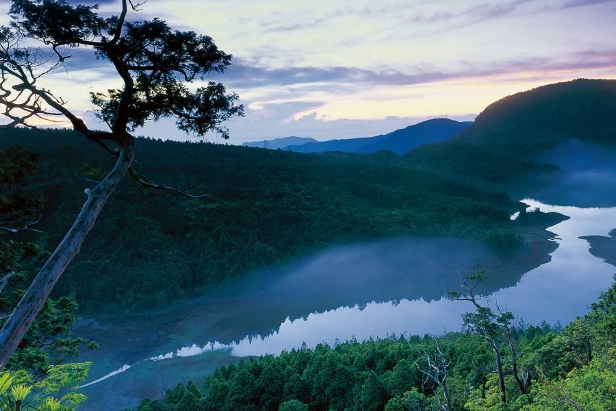 【宜蘭】太平山國家森林遊樂區門票