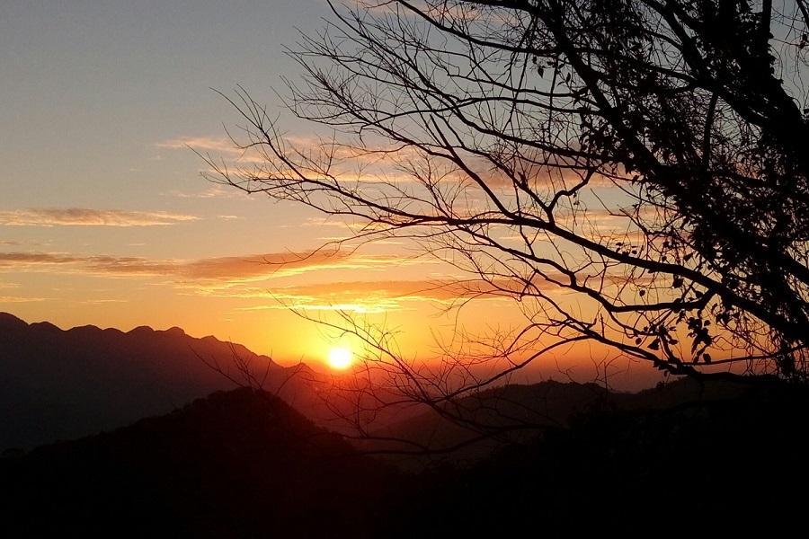 【桃園】東眼山國家森林遊樂區門票(平假日均可使用)