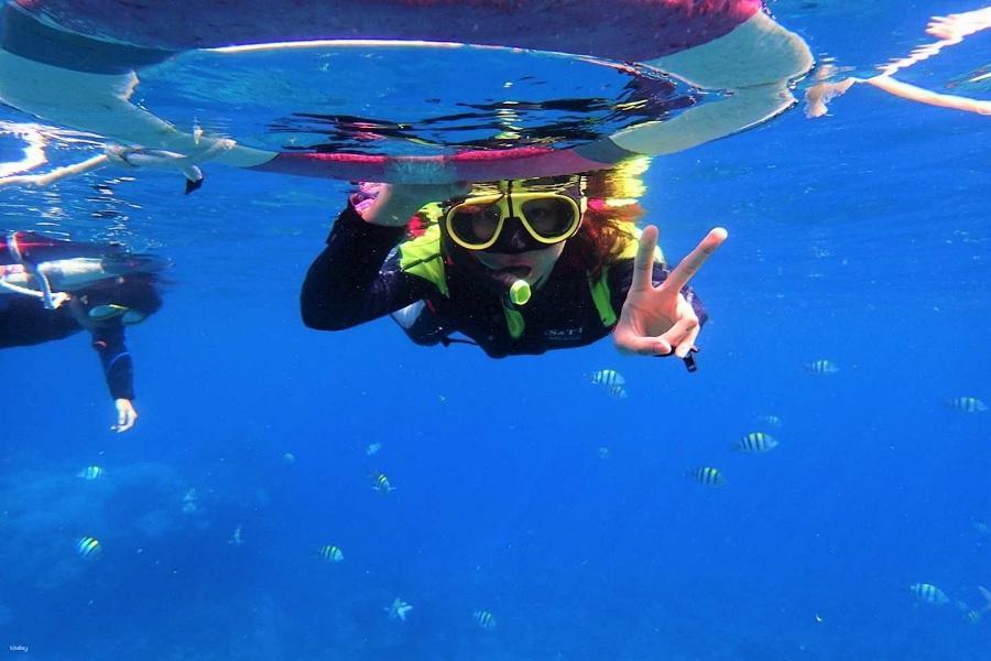 【綠島】海上浮潛體驗與秘境跳港體驗