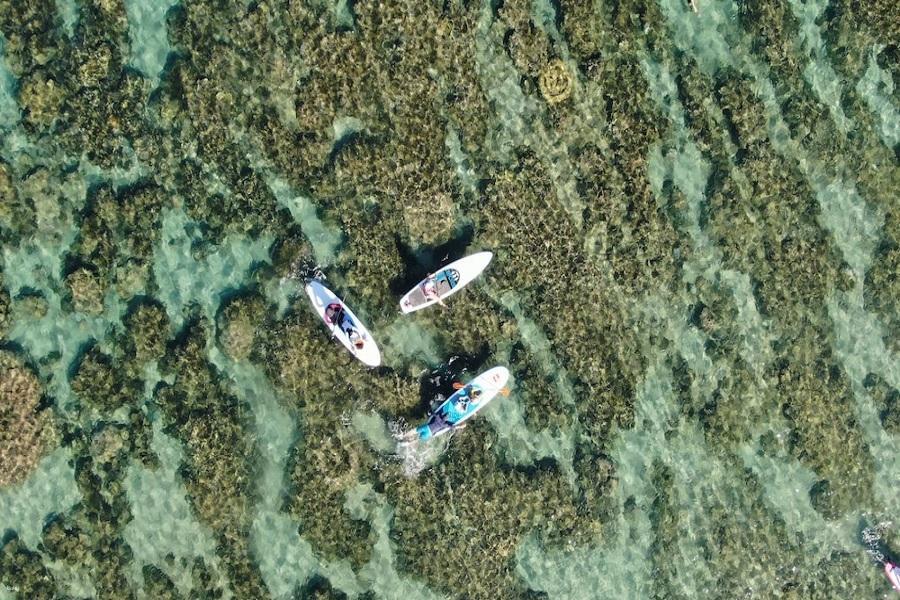 【墾丁】後壁湖中洲沙灘秘境 | 墾丁SUP 立槳體驗