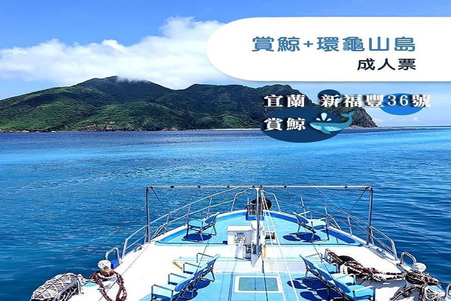 【宜蘭】新福豐36號賞鯨 + 環龜山島